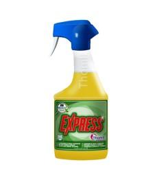 Įvairių dėmių valiklis EXPRESS 750 ml, purškiamas